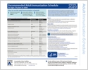 Adult Immunization Schedules (laminated) (page 1)